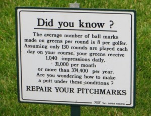 pitchmark
